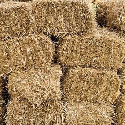 Premium Horse Hay (pickup only - no shipping available)
